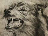 Drawing Creepy Wolf 180 Best Wolf Drawings Images Drawing Techniques Drawing