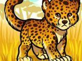 Drawing Cute Cheetah 38 Best Cheetahs Images Animal Drawings Cheetahs Easy Drawings