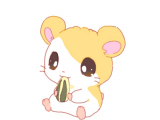 Drawing Cute Hamster Hamtaro D I Used to Love This Lil Guy Kawaii Delights Super