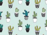 Drawing Cute Succulents 154 Best Succulent Images Succulents Cactus Art Draw