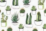 Drawing Cute Succulents Cactus Succulents iPhone Wallpaper Background Lockscreen Photos