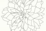 Drawing Dahlia Flowers Dahlia Art Pinterest Art Prints Art and Fine Art Prints