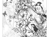 Drawing Detailed Flowers Beautiful Flowers Detailed Floral Designs Coloring Book Preview
