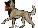 Drawing Dog Malinois 130 Best Maligator Mania Images Belgian Malinois Belgium Malinois