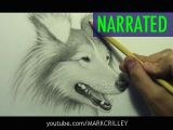 Drawing Dogs Eyes Youtube How to Draw A Dog Narrated Step by Step Youtube