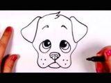 Drawing Dogs Face Cartoon Drawing A Cartoon Tabby Cat Face Art Lessons Pinterest