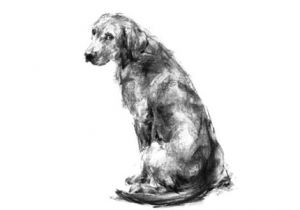 Drawing Dogs In Charcoal the Shepherd Gsd Sketch Print Charcoal Art Drawing Sketches