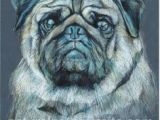 Drawing Dogs with Colored Pencils 15 Best Drawing Of A Dog Images Art Drawings Dog Paintings Drawing S