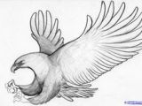 Drawing Easy Eagle 221 Best Eagle Sketches Images Eagle Drawing Eagle Painting