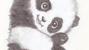 Drawing Easy Red Panda Easy to Draw Panda Bear Okay I Talk In My Sleep and My Friend