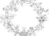 Drawing Embroidery Flowers Ilustraa A O Flores Do Brasil Illustration Flowers Brazil Glaucia