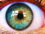 Drawing Eye Green Mira Bien Windows Eyes Eye Photography Beautiful Eyes