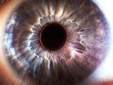 Drawing Eye Of the Storm 79 Best Eye Images Beautiful Eyes Gorgeous Eyes Human Eye
