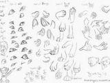 Drawing Eyes Furry 34 Best Furry Anthro Tutorials Images Drawing Tutorials Drawing
