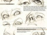 Drawing Eyes In Perspective Realistic Drawing Reference Dump Zbrush Anatomy Pinterest
