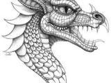 Drawing Fantasy Dragons 352 Best Dragons Fantasy Draw Doodle Images In 2019 Cool