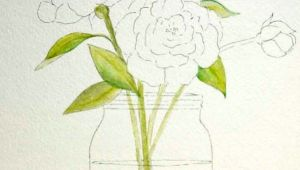 Drawing Flowers Aquarelle Peony Patterns Diy Projects Painting Watercolor Drawings