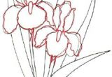 Drawing Flowers Course 491 Best Draw Flowers Images In 2019 Drawings Paint Painting