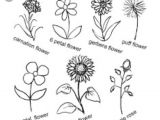 Drawing Flowers Doodling Pin by Gabriele Ruggaber Rapp On Calligraphy Doodles Drawings