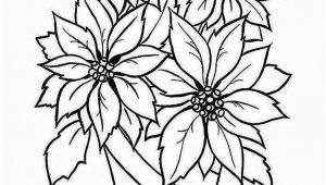 Drawing Flowers for Beginners 26 ordinary What to Draw for Beginners Helpsite Us