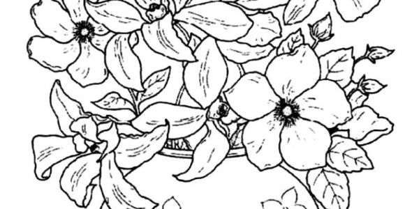 Drawing Flowers In Color Fresh Flowers to Color Creditoparataxi Com