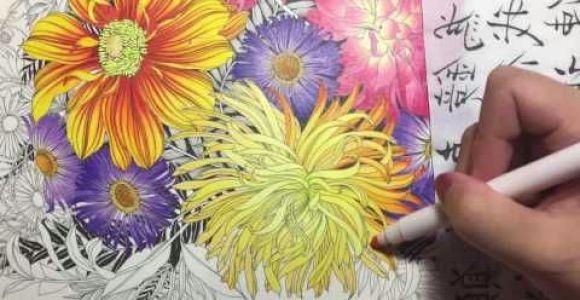 Drawing Flowers In Colored Pencils Flower Coloring Tutorial 2 Floribunda Coloring Book Colored