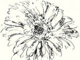 Drawing Flowers In Pen and Ink How to Draw and Sketch Flowers In Various Mediums
