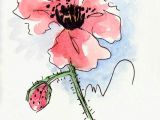 Drawing Flowers In Pen and Ink Poppy Flower Water Color Hand Painted original Watercolor Art