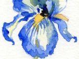 Drawing Flowers In Watercolor 102 Best Watercolor Flowers Images In 2019 Drawings Flower