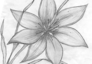 Drawing Flowers Pic 61 Best Art Pencil Drawings Of Flowers Images Pencil Drawings