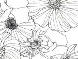Drawing Flowers Using Geometric Shapes 28 Best Line Drawings Of Flowers Images Flower Designs Drawing