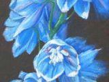Drawing Flowers Using Pastels 316 Best Oil Pastel Art Images In 2019 Oil Pastel Art Oil Pastels
