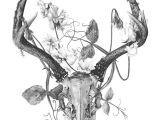 Drawing Goat Skull Pin by Tiffany Larson On Tattoos Tattoos Deer Skull Tattoos