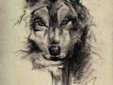 Drawing Half Wolf 73 Amazing Wolf Tattoo Designs Ink Wolf Tattoos Tattoos Wolf