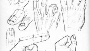 Drawing Hands with Lines Drawing Hands Art References Drawings How to Draw Hands Hand