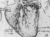 Drawing Heart with Blood Heart and Coronary Arteries Leonardo Davinci Art Science