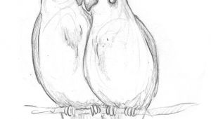 Drawing Ideas Birds Image Result for Drawing Ideas for Beginners Birds Pencil