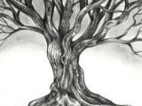 Drawing Ideas Of Trees 1471 Best Art Lesson Ideas Trees Images Drawings Art for Kids