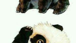 Drawing Ideas Panda Pandas Drawing Ideas Panda Panda Art Animal Drawings