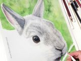 Drawing Ideas Rabbit original Kunstwerk Kanicnhen Farbstiftzeichnung