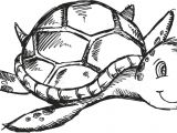 Drawing Ideas Turtle Cute Sketch Doodle Drawing Sea Turtle Art Illustration Royalty