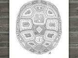 Drawing Ideas Turtle Geometric Turtle Shell Archival Print Pattern Idea for Needlework