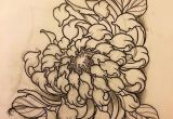 Drawing Japanese Flowers Chrysanthemum for Friday Tattoo Tattooart Tattooartist