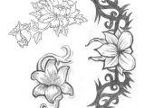 Drawing Jasmine Flowers Jasmine Flower Drawing Flower Tattoos Jasmine 2 Tattoo Designs
