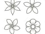 Drawing Jasmine Flowers Jasmine Flower Icons Set On White Background Vector Stock Vector