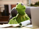 Drawing Kermit the Frog Fired Kermit Actor Responds after Jim Henson S Daughter Says He Made