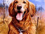 Drawing Little Dogs Jim Killen Paintings Art De Sans Condition Dogs Dog Paintings