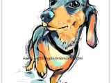Drawing Little Dogs Little Dachshund Cartoon Your Memories Color Book Pages