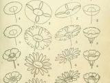 Drawing Made Easy Pdf 99 Best Flower Design Drawing Images Drawing Flowers Floral