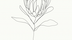 Drawing Minimalist Flowers Pin by Lexxxxi On Tattoo Ideas Drawings Art Single Line Drawing